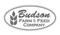 Budson