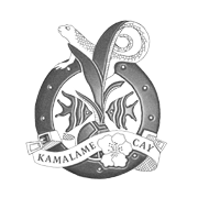 kc-logo-web5b gray_180